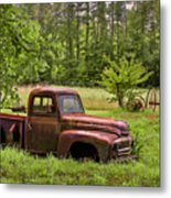 Not Forgotten Metal Print by Debra and Dave Vanderlaan