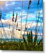 November Day At The Beach In Florida Metal Print by Susanne Van Hulst