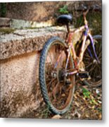 Old Bycicle Metal Print by Carlos Caetano