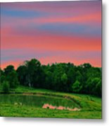 Restful Afternoon Metal Print by Jan Amiss Photography