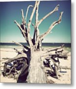 Roots To The Sky-vintage Metal Print by Chris Andruskiewicz
