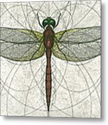 Ruby Meadowhawk Dragonfly Metal Print by Charles Harden