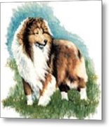 Sheltie Watch Metal Print by Kathleen Sepulveda