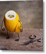 Simple Things 11 Metal Print by Nailia Schwarz