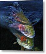 Sole Mates Metal Print by Brian Pelkey