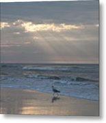 Solitude Metal Print by Bill Cannon