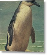 Study Of A Penguin Metal Print by Henry Stacey Marks