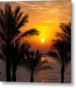 Sunrise Over The Red Sea Metal Print by Jane Rix