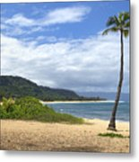 Sunset Point Palm Tree Metal Print by Paul Topp