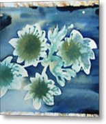 The Hopes And Dreams Of A Blossom On A Lake Metal Print by Amy Bernays