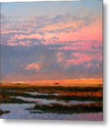 The Marsh  Metal Print by Gary Gowans