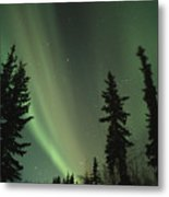 The Northern Lights Metal Print by Maria Stenzel