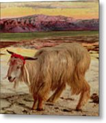 The Scapegoat Metal Print by William Holman Hunt