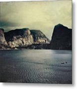 Through Thick Or Thin Metal Print by Laurie Search