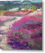 Trial Gardens In Fort Collins Metal Print by Grace Goodson