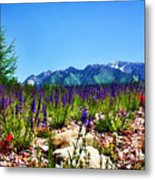 Wasatch Mountains In Spring Metal Print by Tracie Kaska
