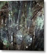 Zauberwald Vollmondnacht Magic Forest Night Of The Full Moon Metal Print by Mimulux patricia no