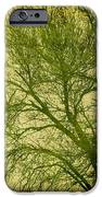 Serene Green 1 IPhone Case by Wendy J St Christopher