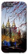 Slc Temple Lights Lamp IPhone Case by La Rae  Roberts