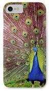 Peacock IPhone Case by Carlos Caetano