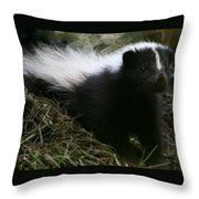 Here Kitty Kitty Throw Pillow by Barbara S Nickerson