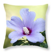 Purple Althea Throw Pillow by Kenneth Albin