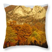 Sycamore And Oak Trees At Sunset Throw Pillow by Raymond Gehman