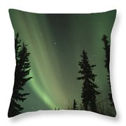 The Northern Lights Throw Pillow by Maria Stenzel