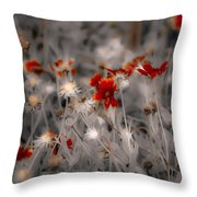 Wildflowers Of The Dunes Throw Pillow by DigiArt Diaries by Vicky B Fuller