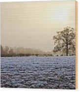 Tree In A Field On A Snowy Day Wood Print by Fizzy Image