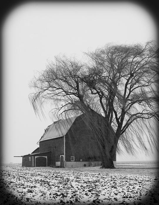 Winter Photograph - 020213-67   Prairie Winter II by Mike Davis