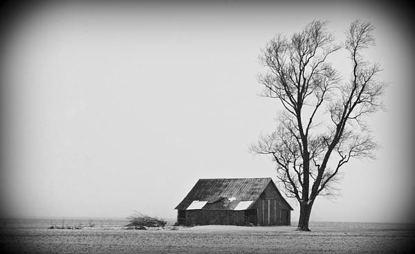 Winter Photograph - 020213-73   Prairie Winter by Mike Davis