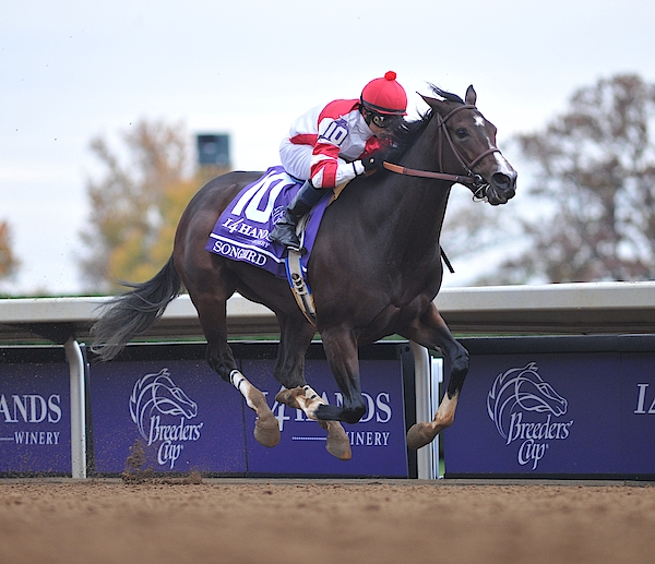 Breeders Cup - Day 2 Photograph by Horsephotos