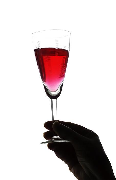 Alcohol Photograph - Cheers by Svetlana Sewell