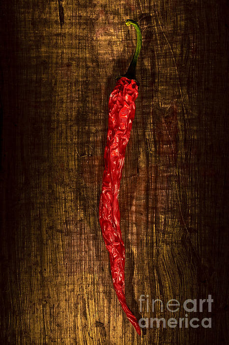 Pepperoni Photograph - Dried Pepperoni by Shawn Hempel
