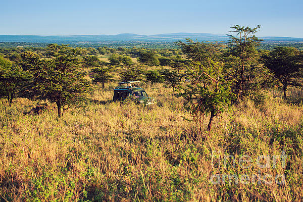 Serengeti Photograph - Jeep With Tourists On Safari In Serengeti. Tanzania. Africa. by Michal Bednarek