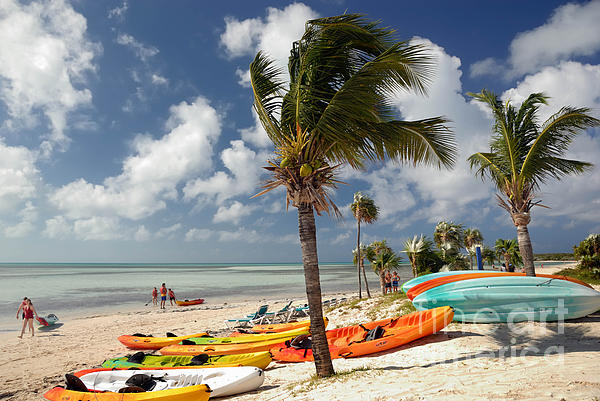 Bahamas Photograph - Kayaks On The Beach by Amy Cicconi