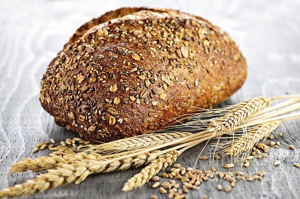 Bread Photograph - Loaf Of Multigrain Bread by Elena Elisseeva