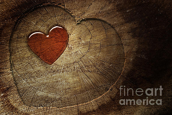 Sun Digital Art - Love Text On  Wooden Background by Mythja  Photography
