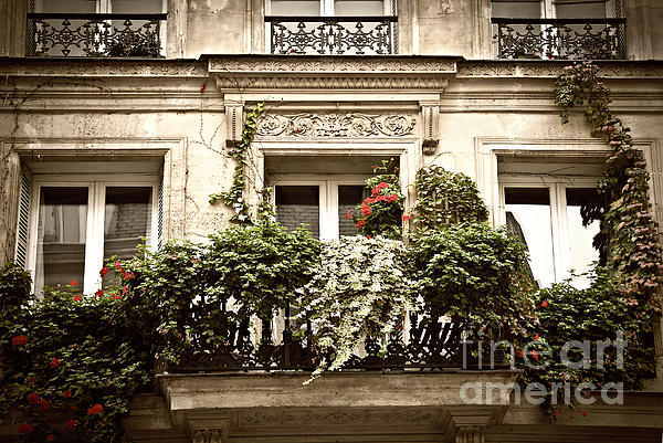 Window Photograph - Paris Windows by Elena Elisseeva