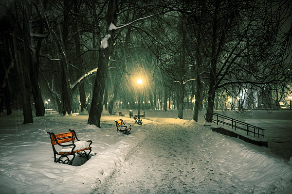 Background Photograph - Red Bench In The Park by Jaroslaw Grudzinski
