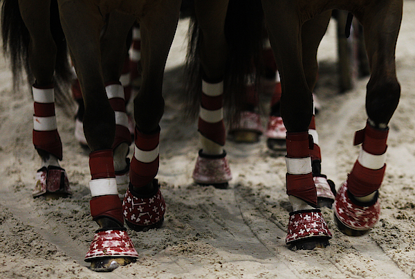 Rolex Grand Slam Of Show Jumping Photograph by Alan Crowhurst