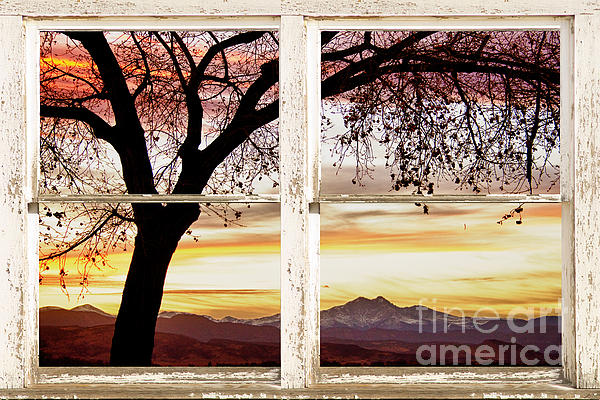 Windows Photograph - Sunset Tree Silhouette Abstract Picture Window View by James BO  Insogna