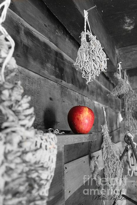 Photographs Photograph - The Apple by Laurinda Bowling