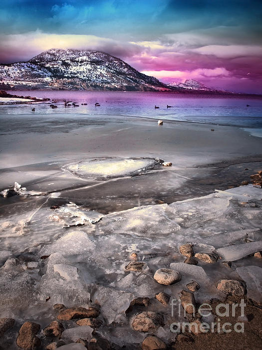 Winter Photograph - The Thaw by Tara Turner