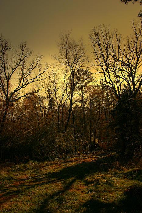 Luminism Photograph - Time Of Long Shadows by Nina Fosdick
