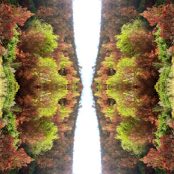 Kaleidoscopic Photograph - Unnatural 77 by Giovanni Cafagna