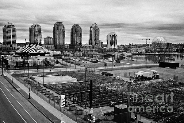 Concord Photograph - urban farm on unused lot at concord pacific place at false creek Vancouver BC Canada by Joe Fox