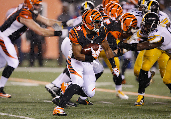 Wild Card Round - Pittsburgh Steelers V Cincinnati Bengals Photograph by Joe Robbins