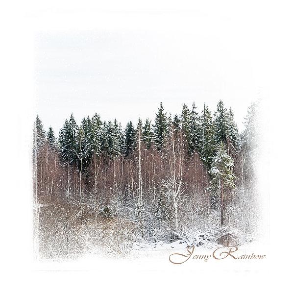 Winter Photograph - Winter Wonderland. Elegant Knickknacks From Jennyrainbow by Jenny Rainbow